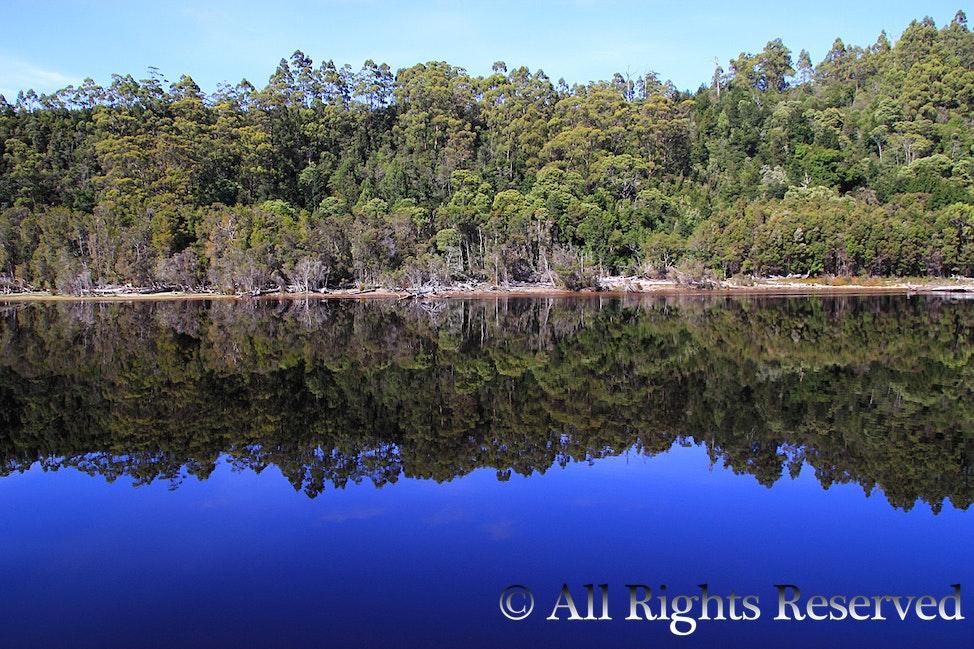 IMG_2534 - Taken on the Gordon River