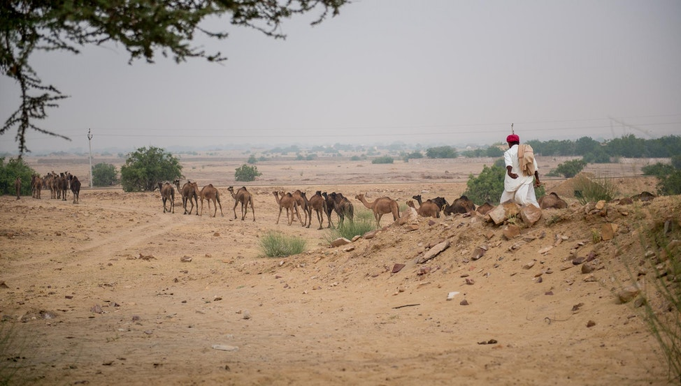 India Portfolio (2 of 16)