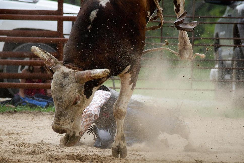 bull riding April27-6069