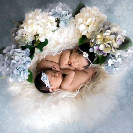 Newborn 2017.-3