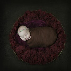 Newborns & Portraits