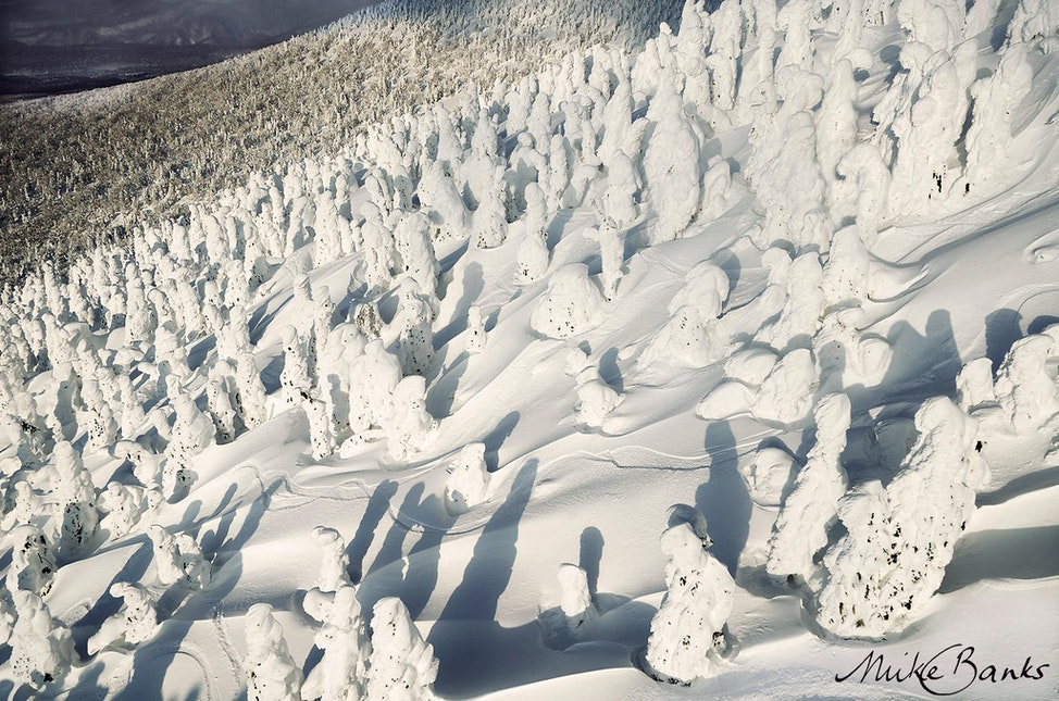 Juhyo - 'Juhyo' (Snow Monsters) dominate the landscape of Hakkoda, Japan. This area receives some of the heaviest snowfalls in the world as prevailing...