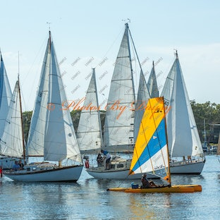 Paynesville Classic Boat Rallys & Shows