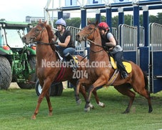 21 NOV RANDWICK JUMP OUTS