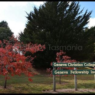 Geneva Christian School